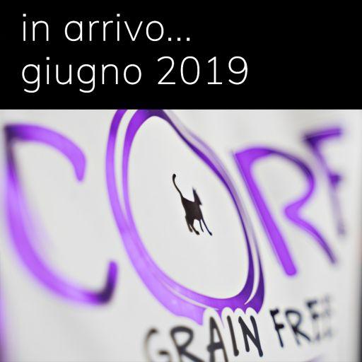 Wellness CORE - Cibo Secco Per Gatti - Salmone e Tonno - Adulti - 300gr.