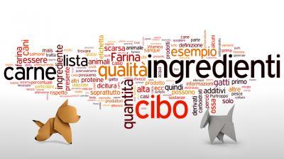 Etichette & Il cibo di qualità per cani e gatti: La lista degli ingredienti