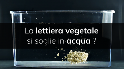 Lettiere Vegetali & Smaltimento Rifiuti