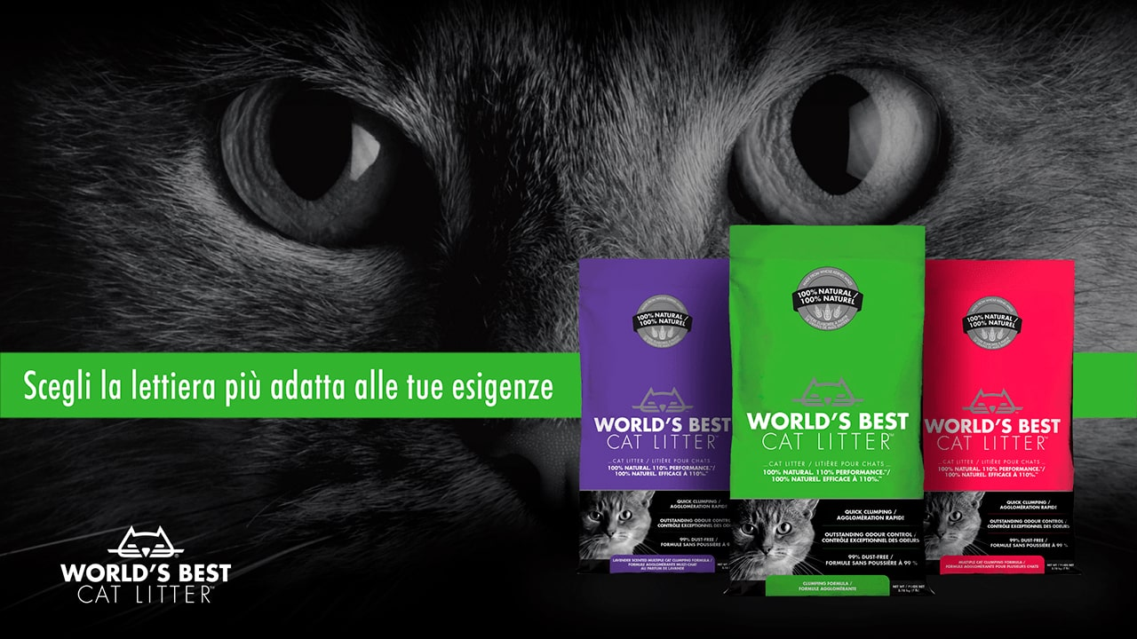 World's Best Cat Litter - Lettiera Vegetale Per Gatti
